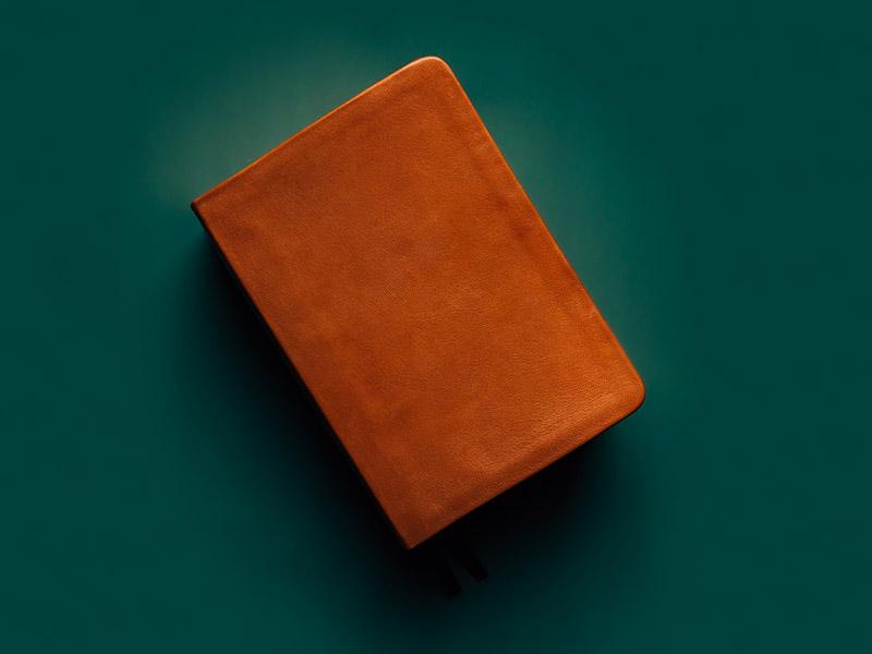 Shop Scriptures