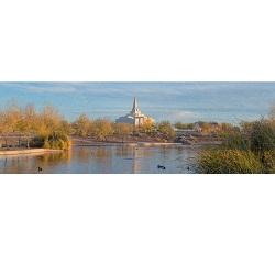 Gilbert Temple - Pond