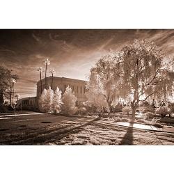 Mesa Temple - Infared Path