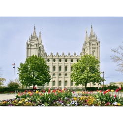 Salt Lake Temple - Tulips